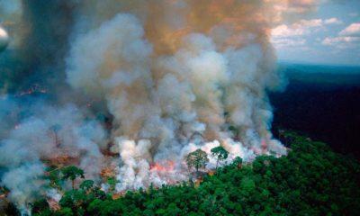 El Amazonas lleva 16 días de incendios y el Presidente sospecha de las ONG