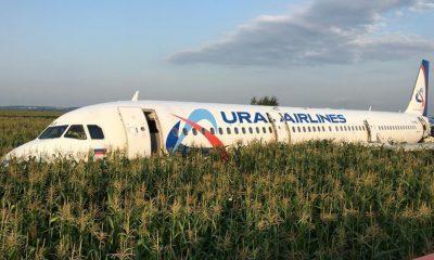 Un avión aterrizó de emergencia en un campo de maíz y no hubo heridos