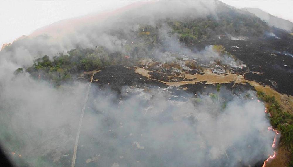 Tras 20 días de incendio, el Gobierno de Brasil analiza enviar al Ejército
