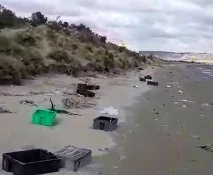 Playa Colombo contaminada por los residuos pesqueros