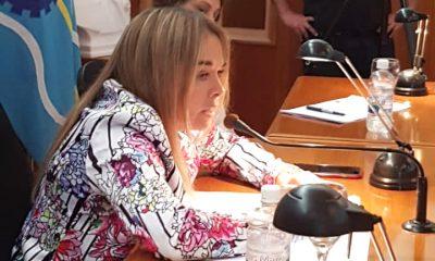 Concejo presupuesto 2020