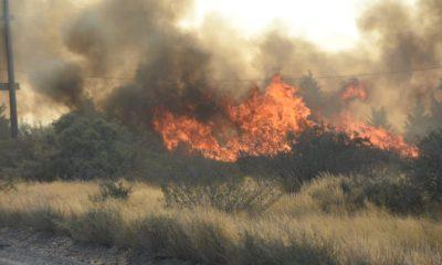Alerta por incendios en Madryn y Península Valdés