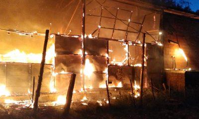 Incendio Cooperativa Mundo Sano Lago Puelo
