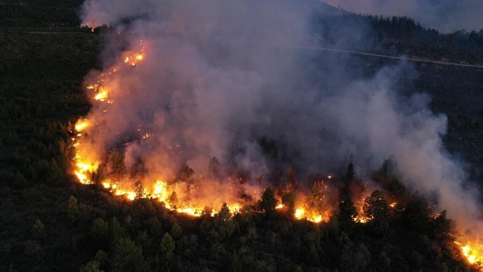 Foto: Servicio de Prevención y Lucha contra Incendios Forestales