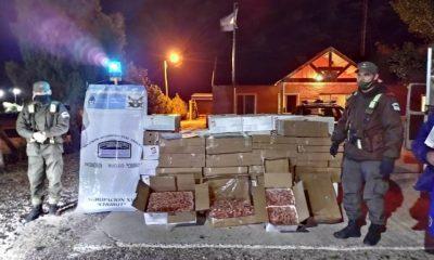 Confiscaron más de una tonelada de langostinos ilegales