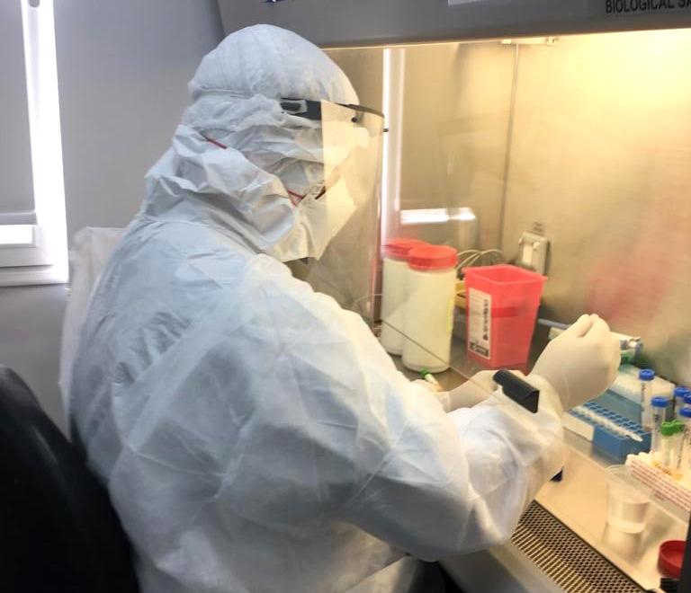 Análisis de muestras de coronavirus