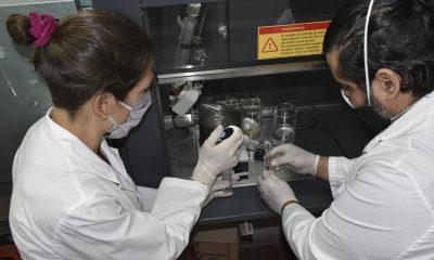 INTA Bariloche desarrolla una vacuna contra el coronavirus