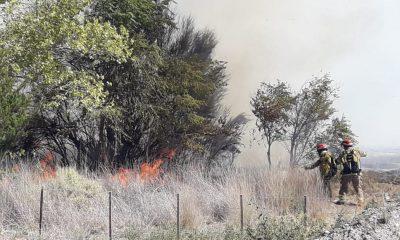 Incendio en cercanías al Puente Hendre