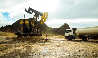 Provincia adjudicó el yacimiento de Cerro Negro para su reactivación