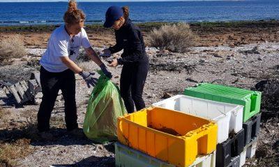 Residuos plásticos costas de Chubut