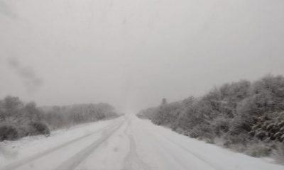 Nevadas en la Ruta Nacional 40 entre Bariloche y El Bolsón