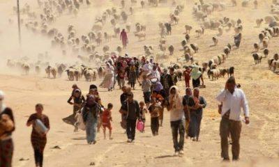 Migración por el cambio climático