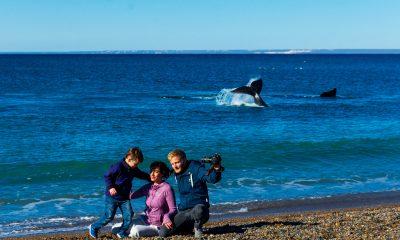 Puerto Madryn Turismo