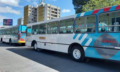 Transporte urbano en Rawson